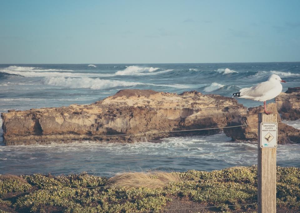 Great Ocean Road-6211 (Kopiowanie)
