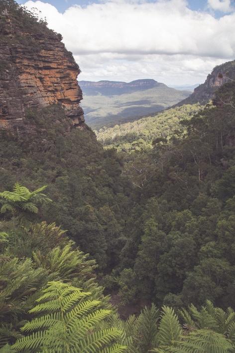 New South Wales-6553 (Kopiowanie)