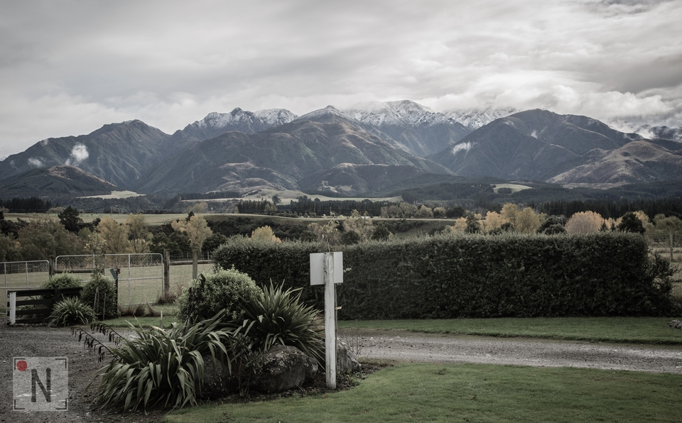 People in NZ-9078 (Kopiowanie)