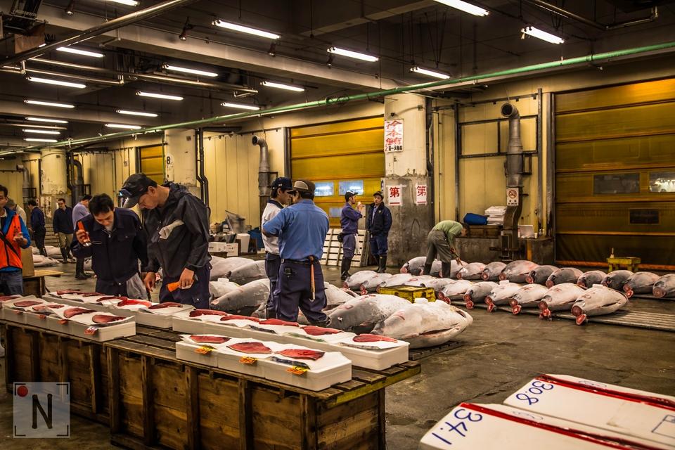 Tsukiji-1327 (Kopiowanie)