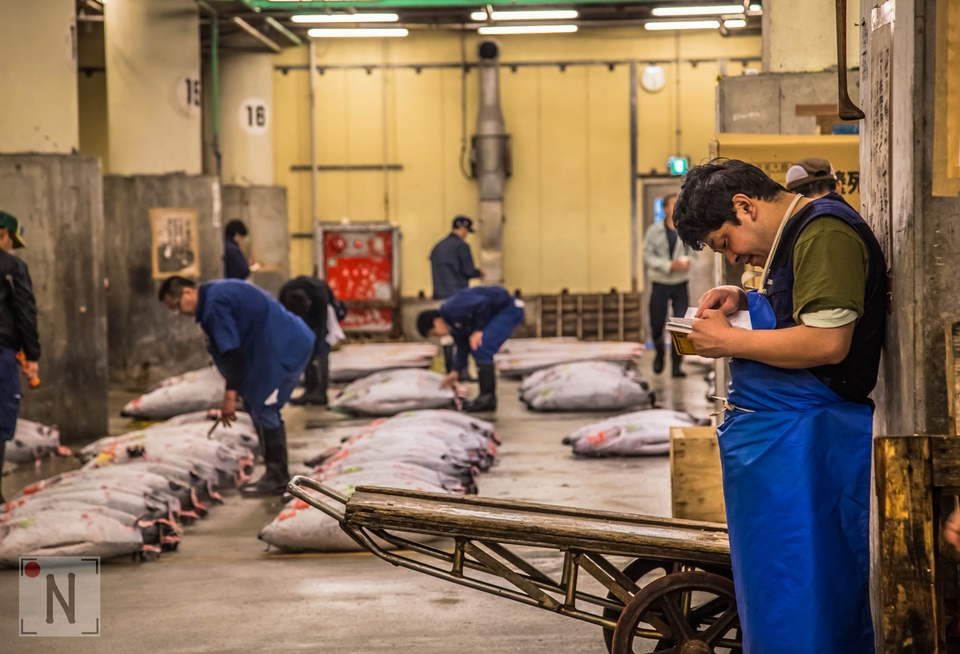 Tsukiji-1353 (Kopiowanie)