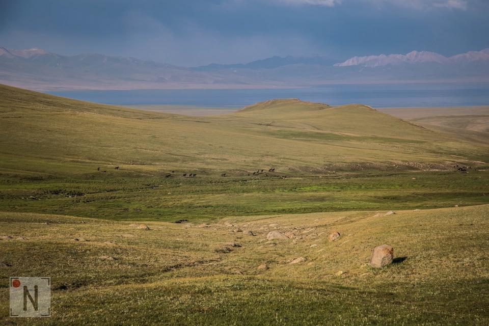 Kirgistan rowerem - Son Kul-4493 29