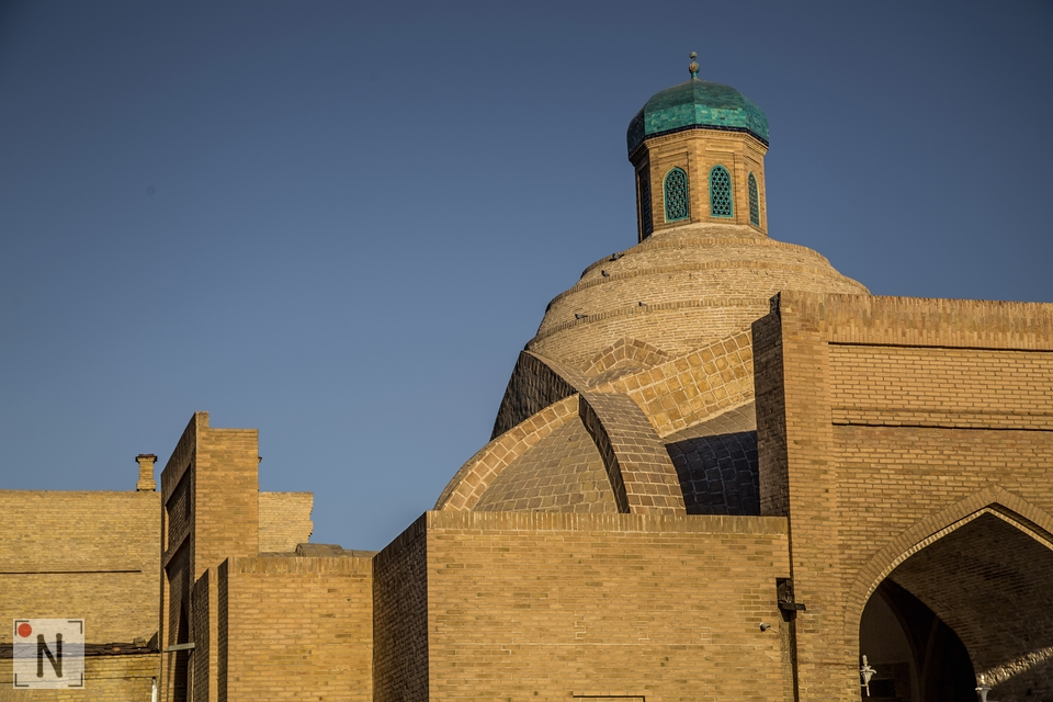 Bukhara-6576 12